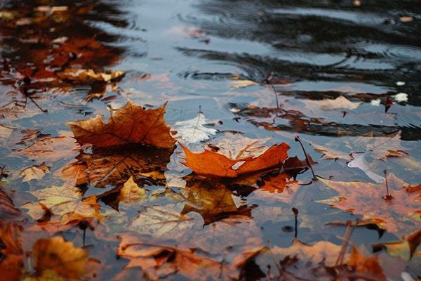 На что следует обратить внимание родителям в сезон дождей и сырости в Португалии